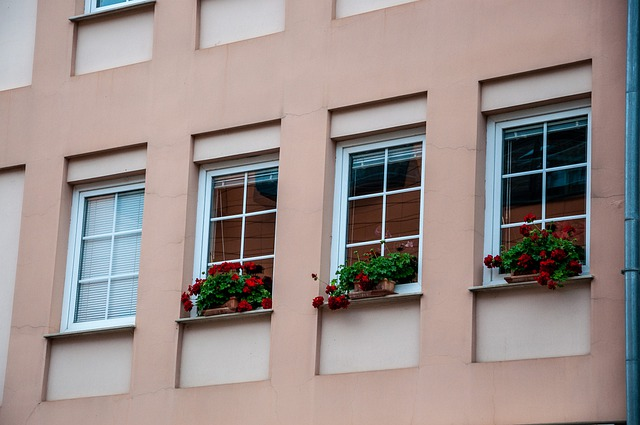 4 measured white replacement windows