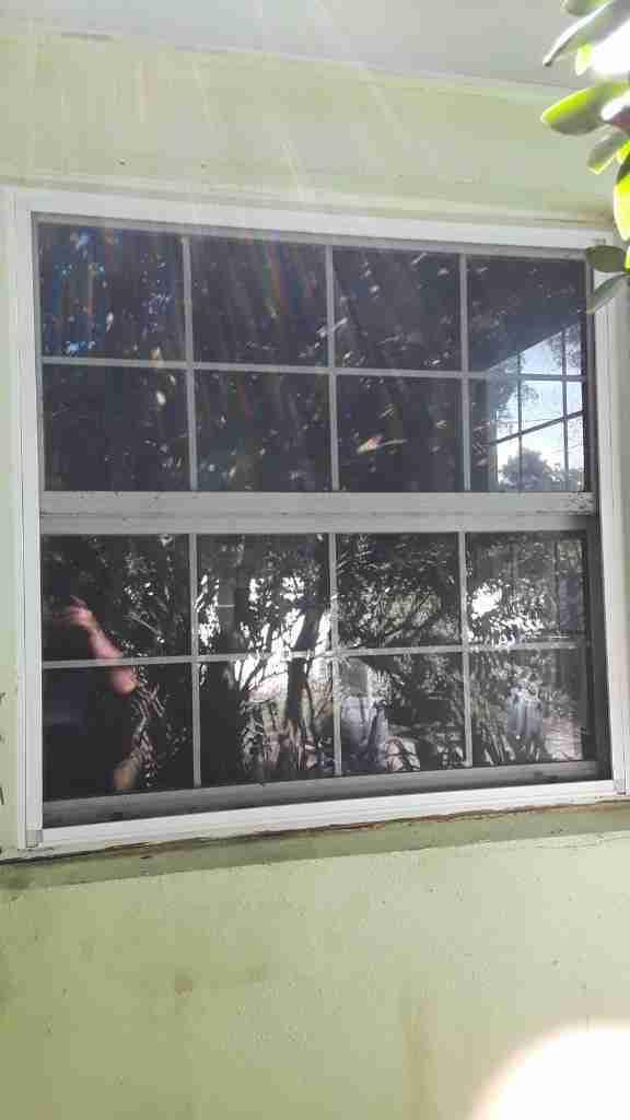 House replacement windows lifespan