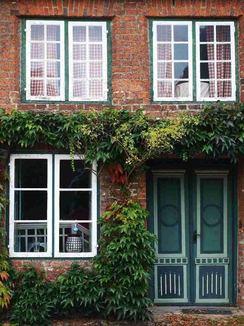 single-pane window replacements